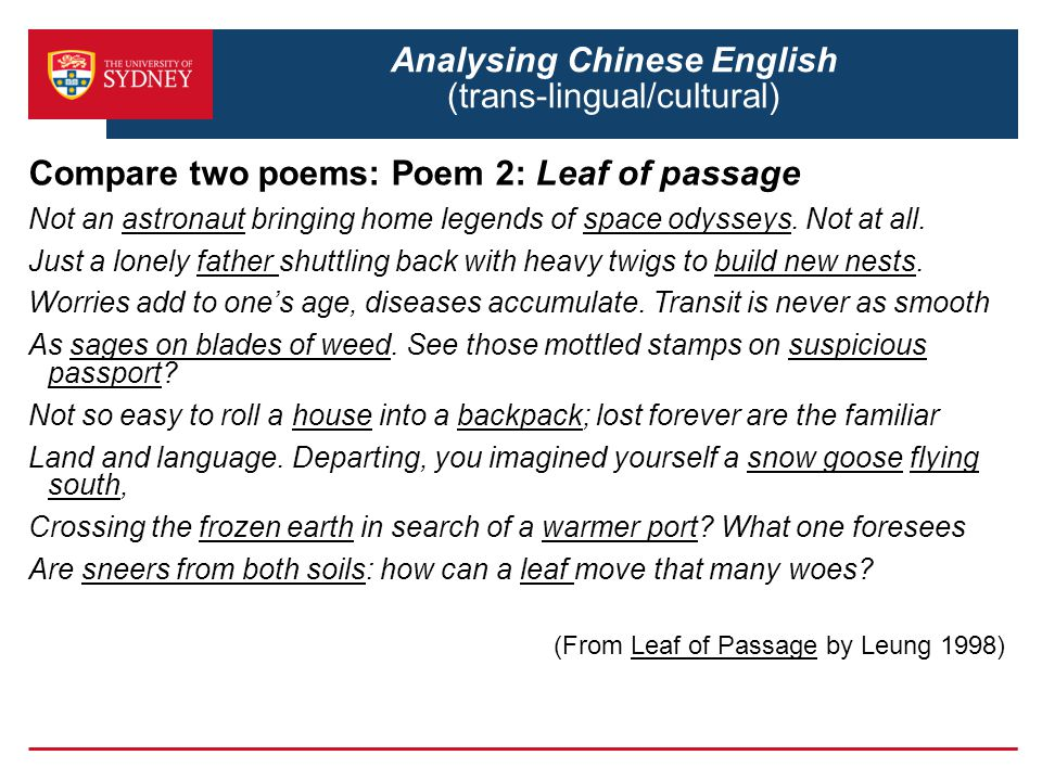 Analysing Chinese English (trans-lingual/cultural)
