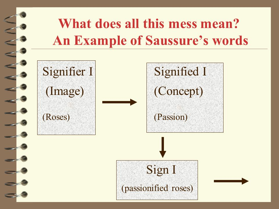 What does all this mess mean An Example of Saussure's words