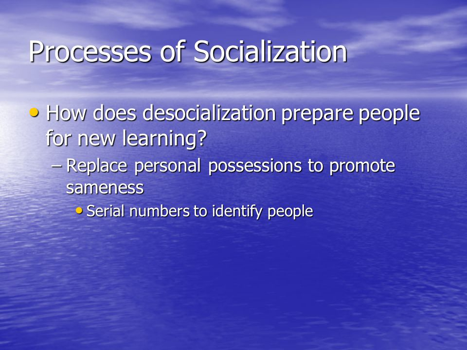 Processes of Socialization