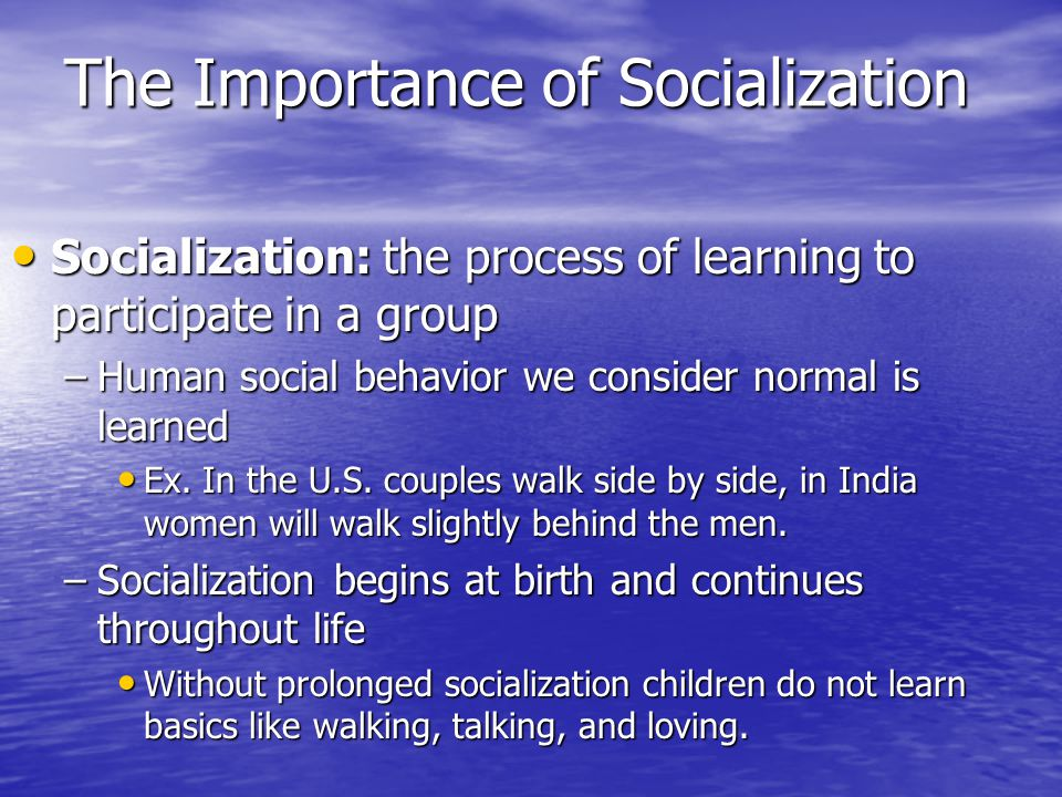 The Importance of Socialization