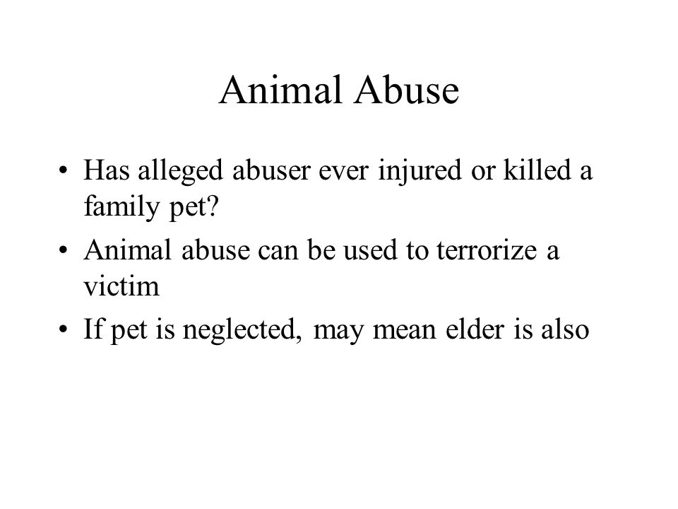 Animal Abuse Has alleged abuser ever injured or killed a family pet