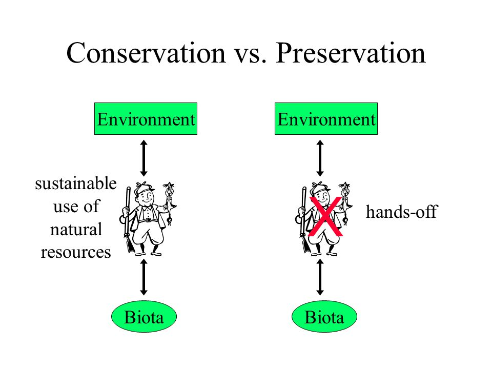 value maintaining natural ecosystems preservation vs conse Conservation values of natural land vs farmland by rbrewer | published:  to allow this protection, i said, the land trust should walk away from the deal if the property has no.