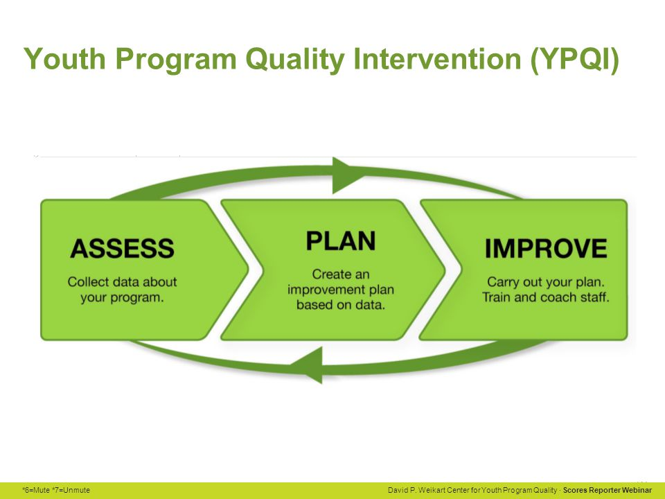 Youth Program Quality Intervention (YPQI)