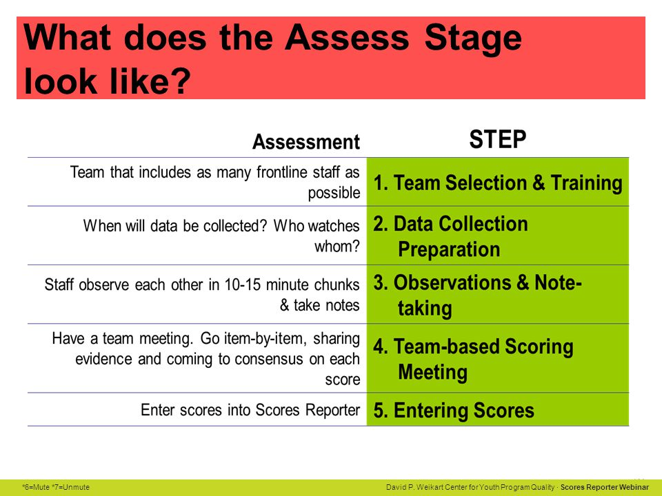 What does the Assess Stage look like
