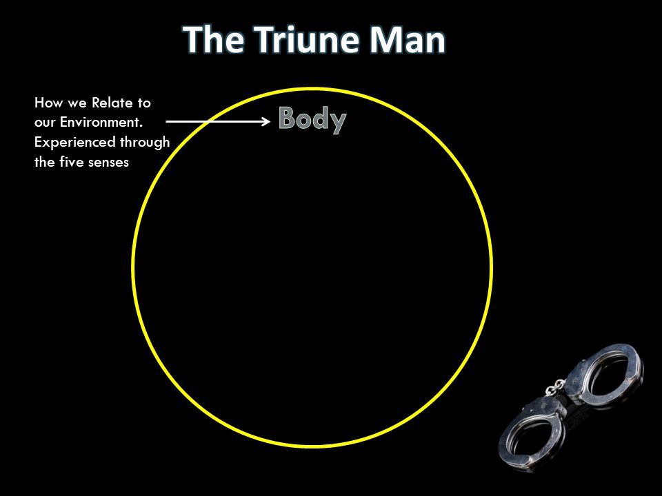 The Triune Man How we Relate to our Environment. Experienced through the five senses Body