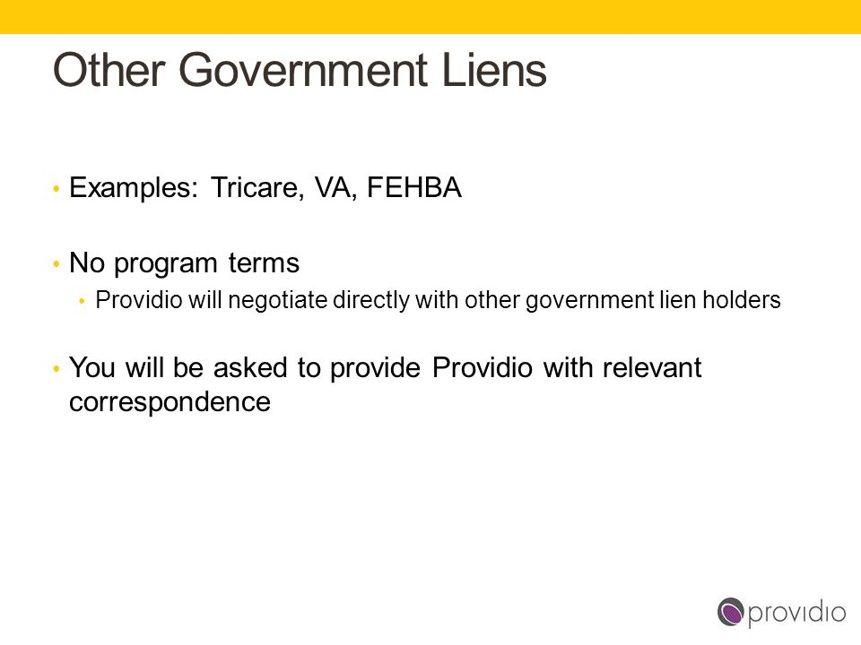 Other Government Liens