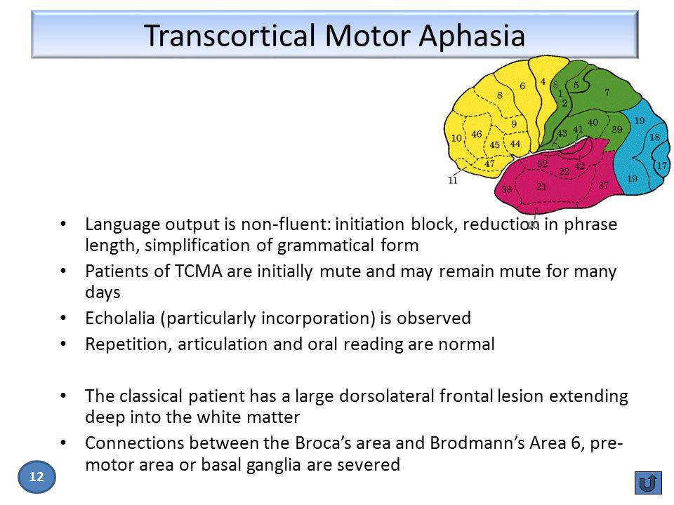 Transcortical Motor Aphasia
