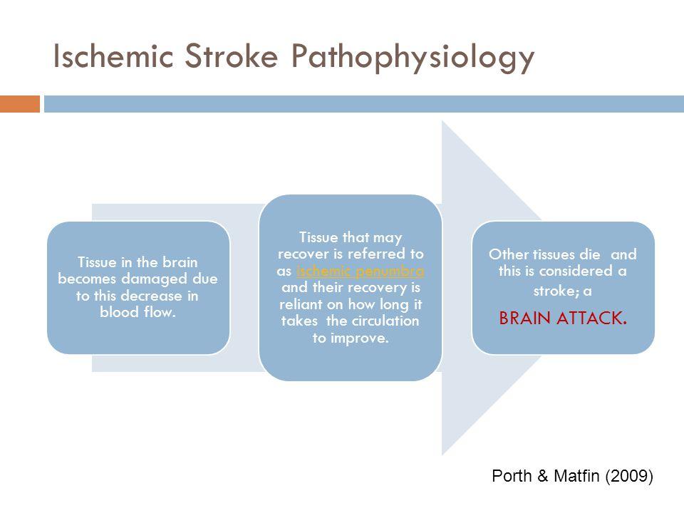 Ischemic Stroke Pathophysiology