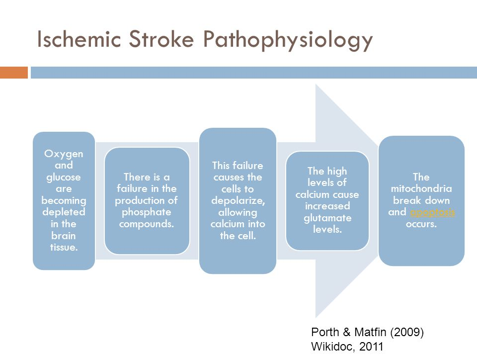 Ischemic Stroke Pathophysiology