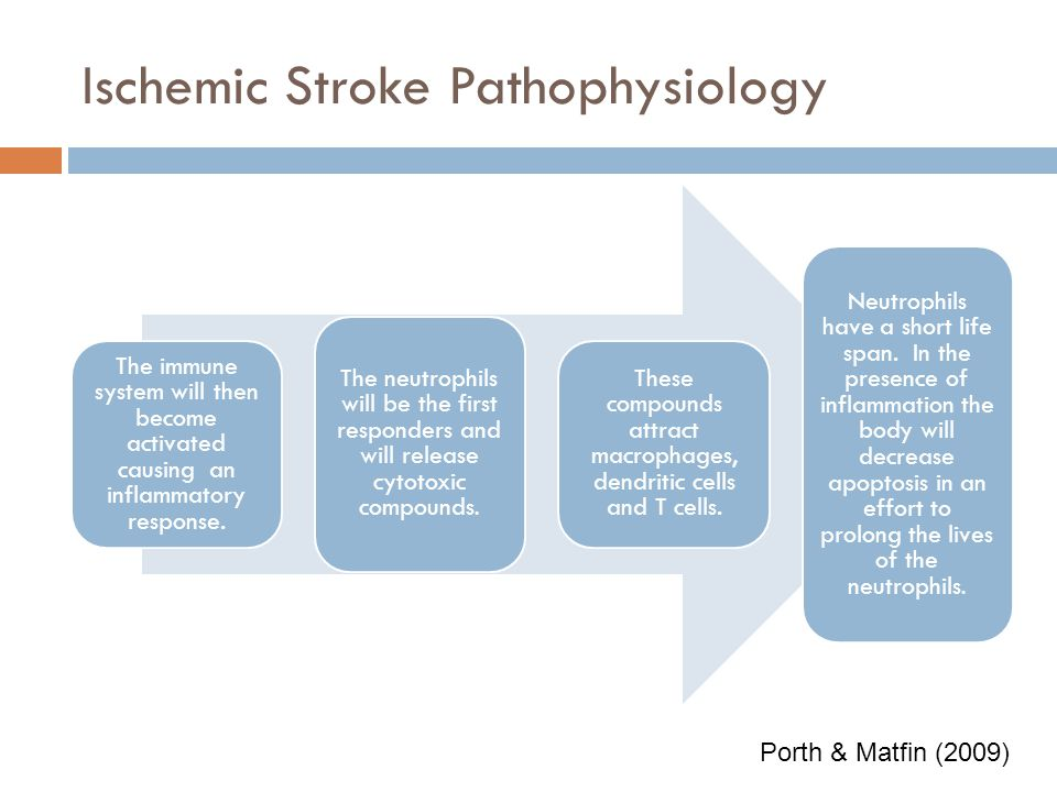 Stroke pathophysiology College paper Academic Writing Service