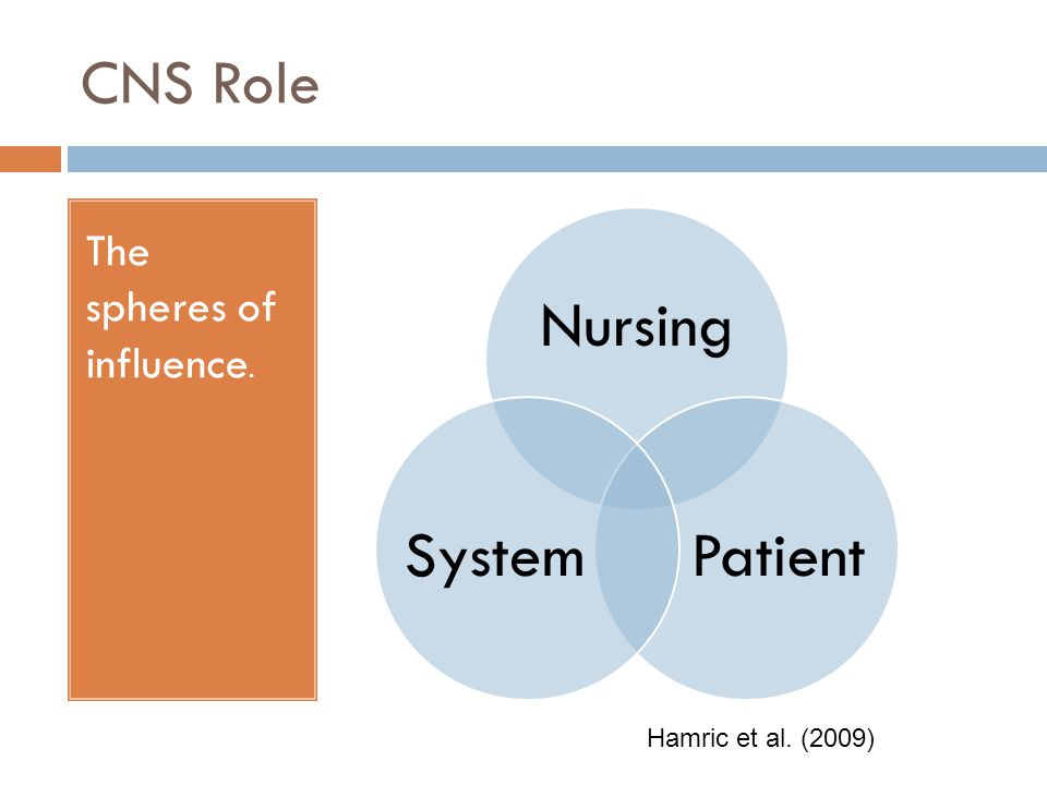 CNS Role Nursing Patient System The spheres of influence.