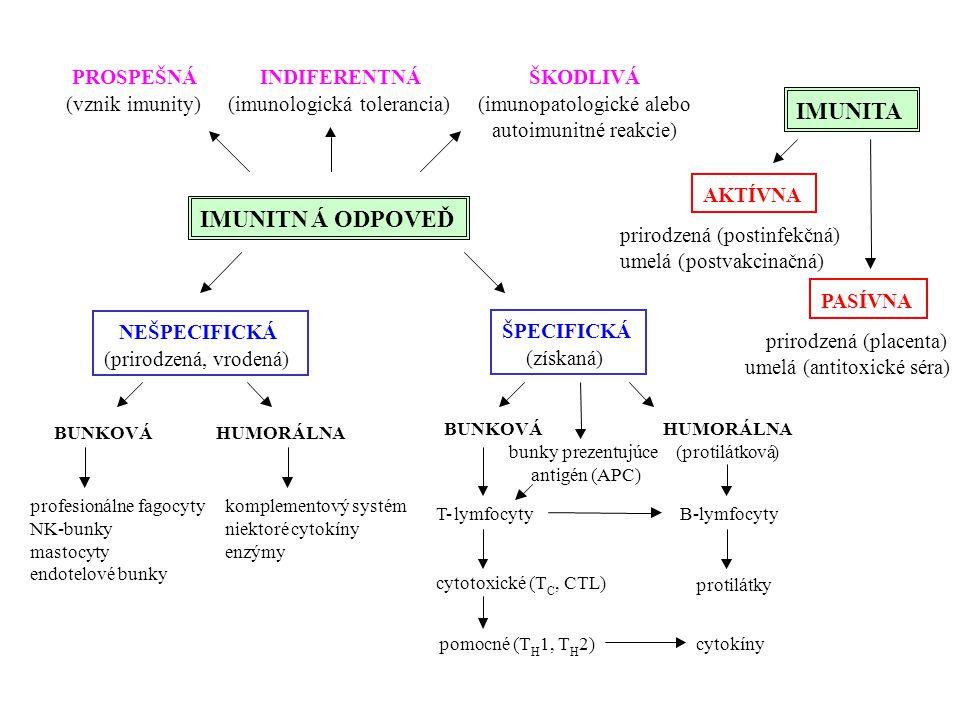 IMUNITN Á ODPOVEĎ IMUNITA PROSPEŠNÁ (vznik imunity) INDIFERENTNÁ
