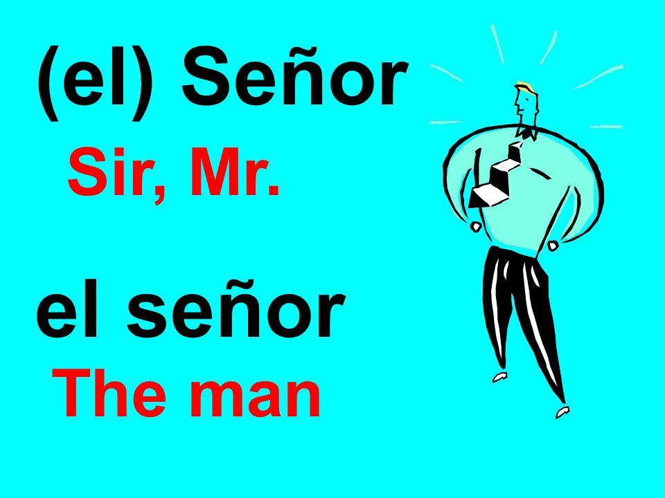 (el) Señor Sir, Mr. el señor The man