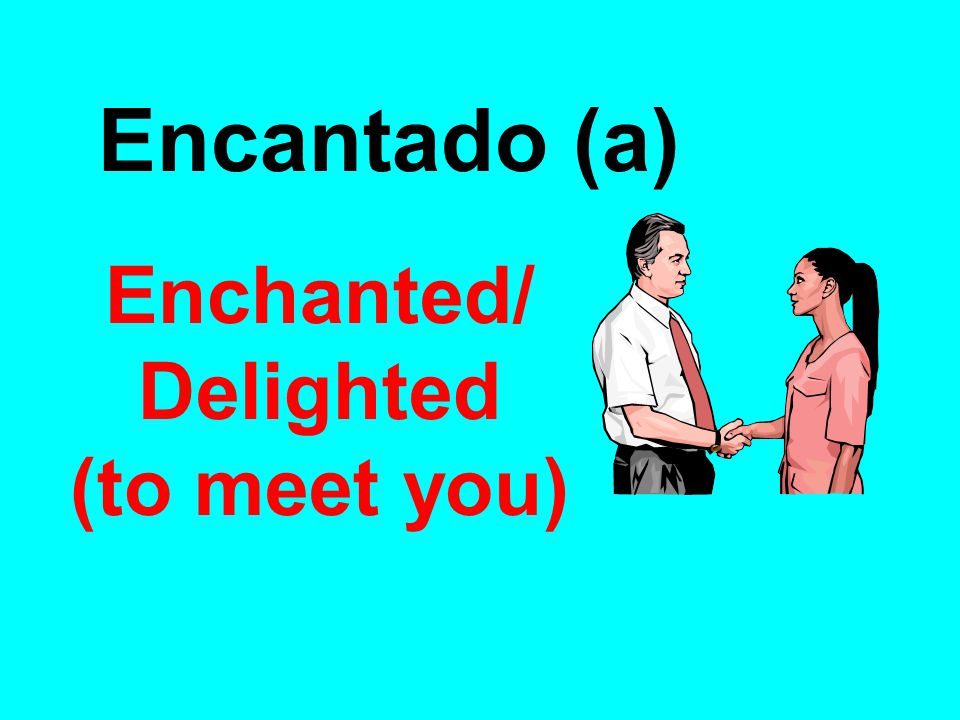 Enchanted/ Delighted (to meet you)‏