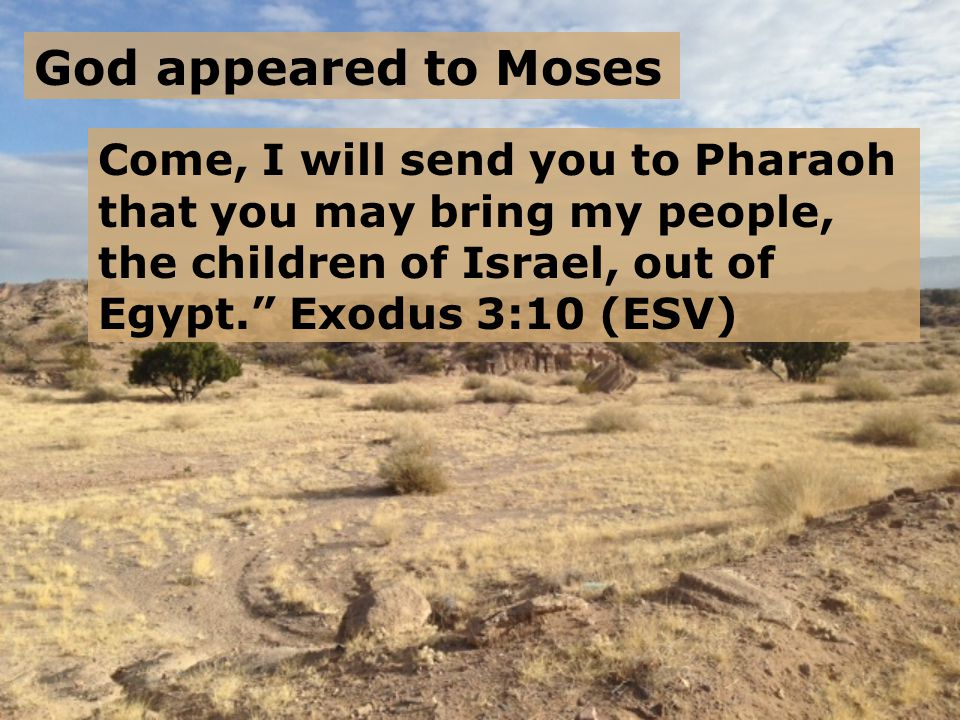 God appeared to Moses Come, I will send you to Pharaoh that you may bring my people, the children of Israel, out of Egypt. Exodus 3:10 (ESV)