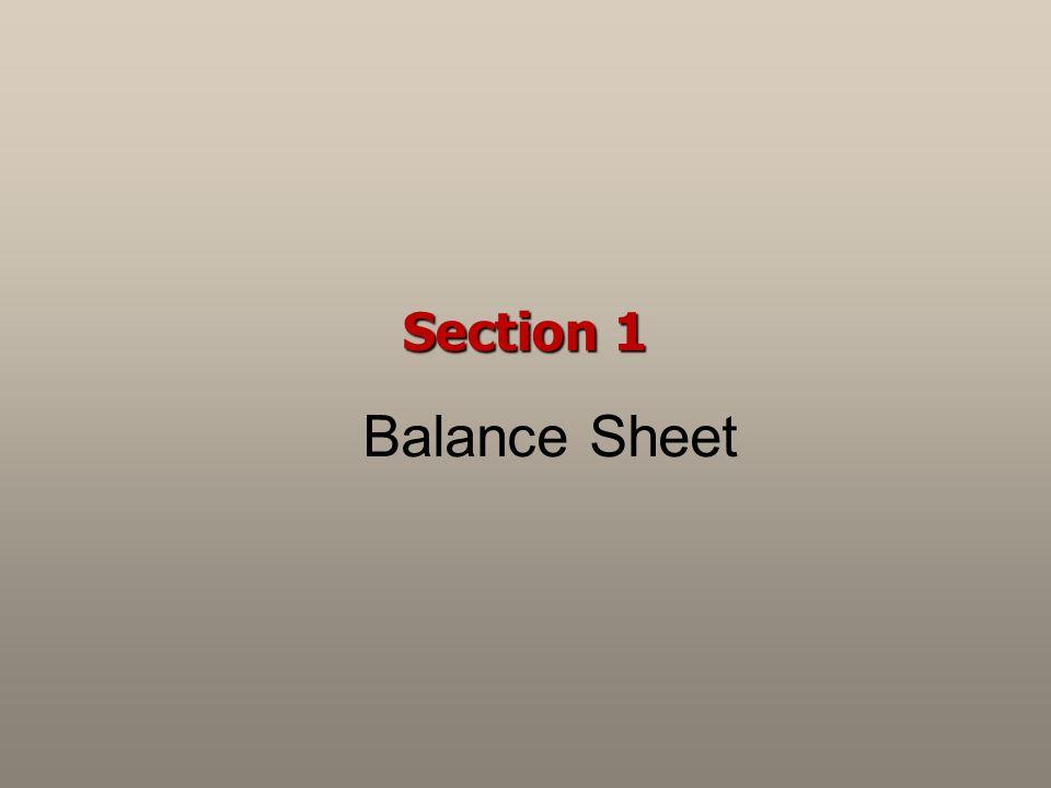 Section 1 Balance Sheet