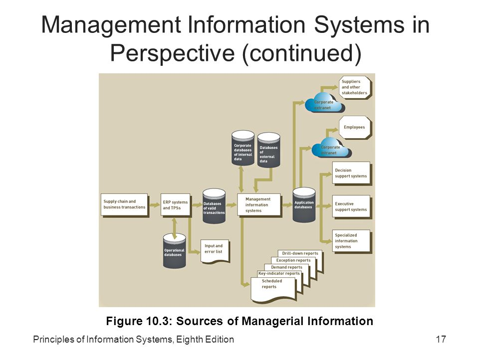 Management Information Systems in Perspective (continued)