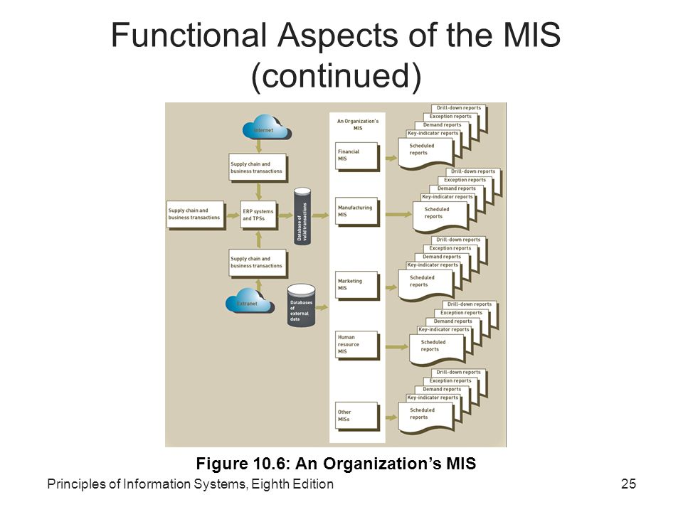 Functional Aspects of the MIS (continued)