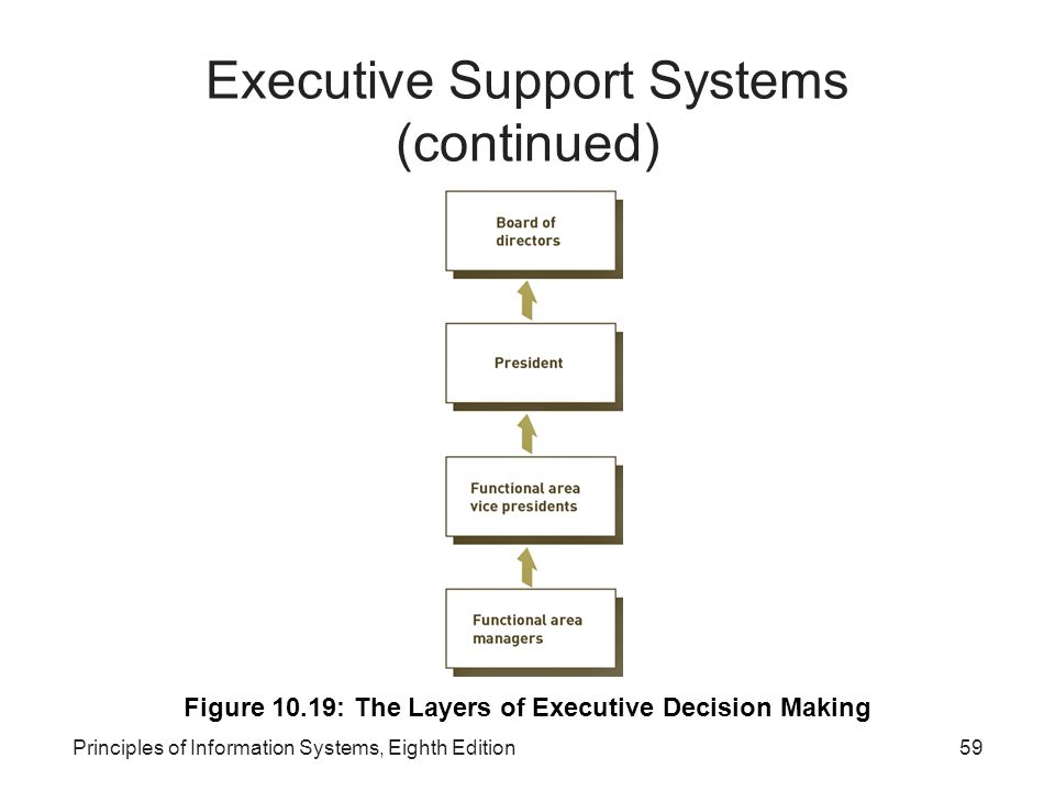 Executive Support Systems (continued)