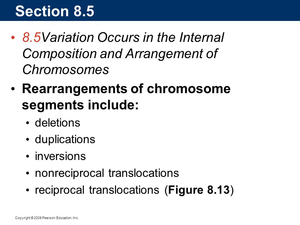 Section 8.5 8.5 Variation Occurs in the Internal Composition and Arrangement of Chromosomes. Rearrangements of chromosome segments include: