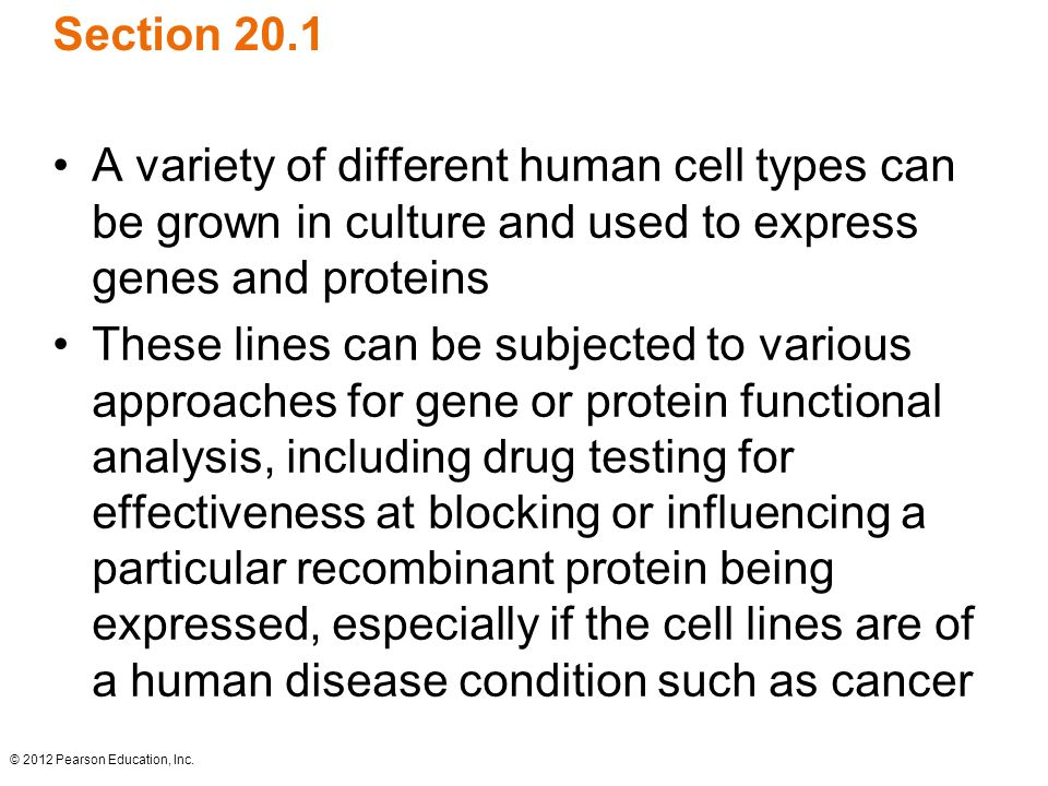 Section 20.1 A variety of different human cell types can be grown in culture and used to express genes and proteins.