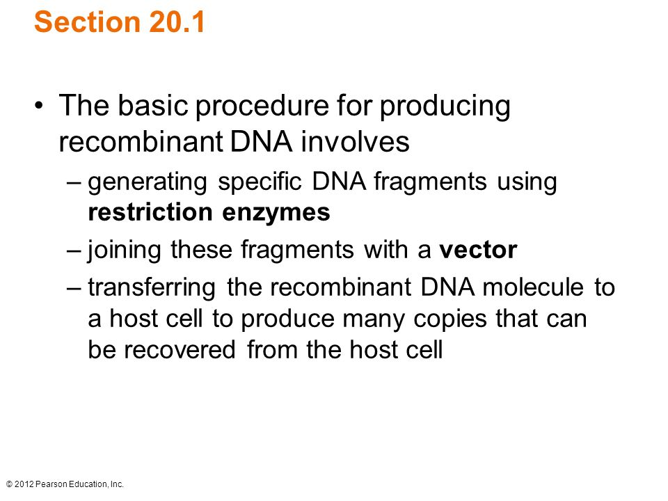 The basic procedure for producing recombinant DNA involves