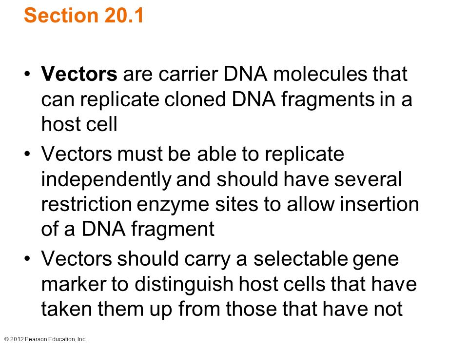 Section 20.1 Vectors are carrier DNA molecules that can replicate cloned DNA fragments in a host cell.