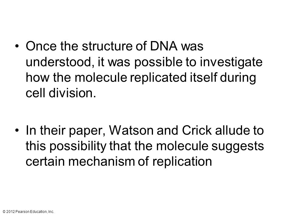 Once the structure of DNA was understood, it was possible to investigate how the molecule replicated itself during cell division.