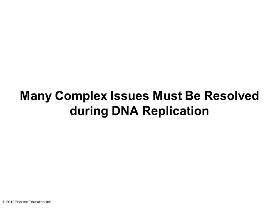 Many Complex Issues Must Be Resolved during DNA Replication
