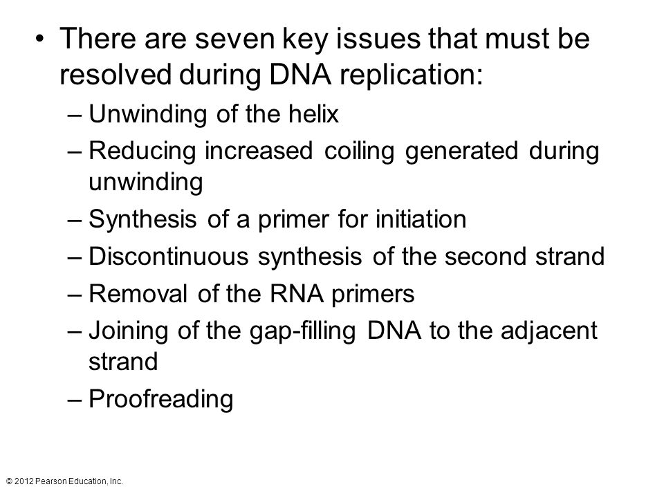 There are seven key issues that must be resolved during DNA replication: