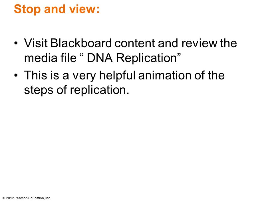 Visit Blackboard content and review the media file DNA Replication