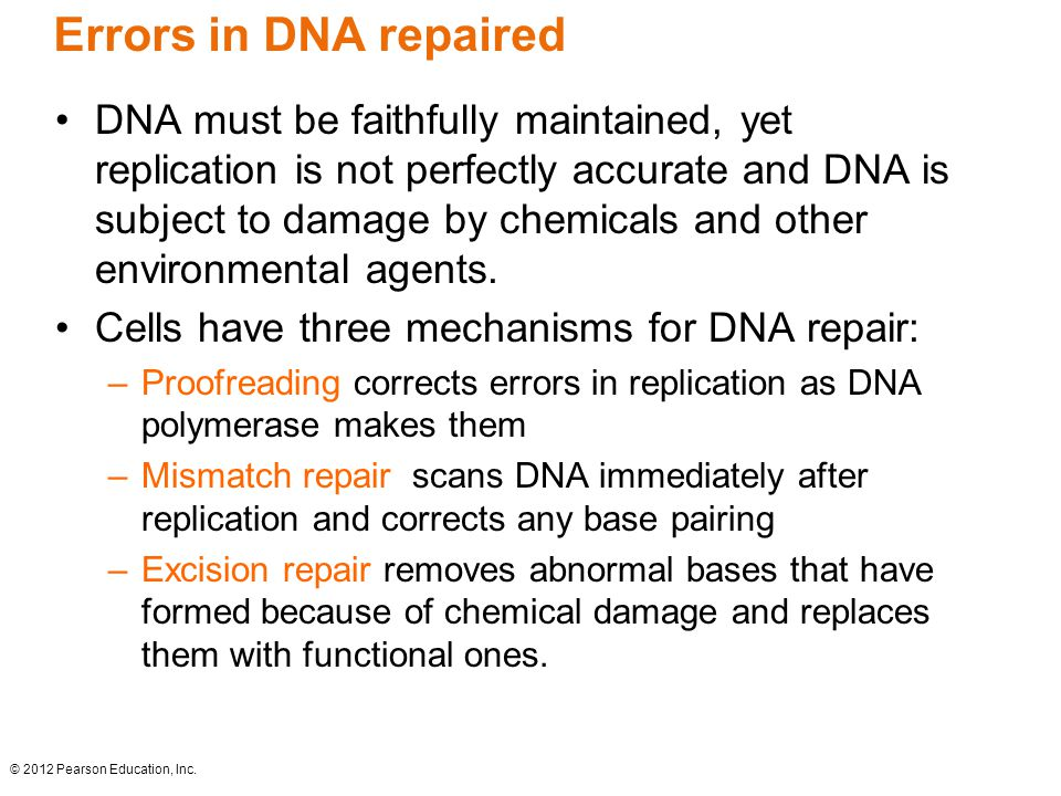 Errors in DNA repaired