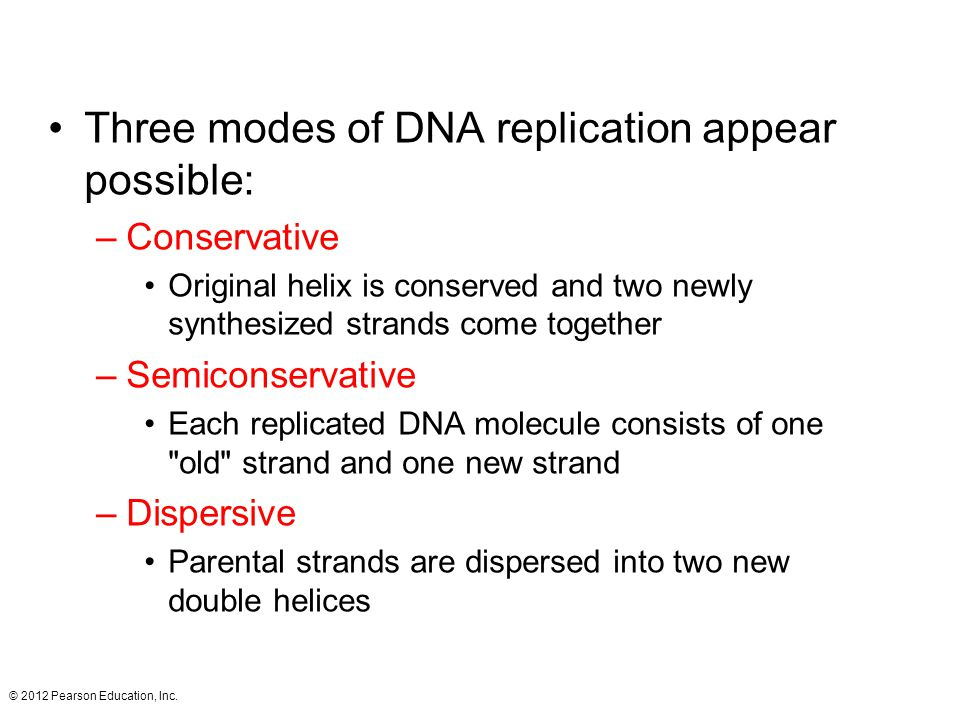 Three modes of DNA replication appear possible: