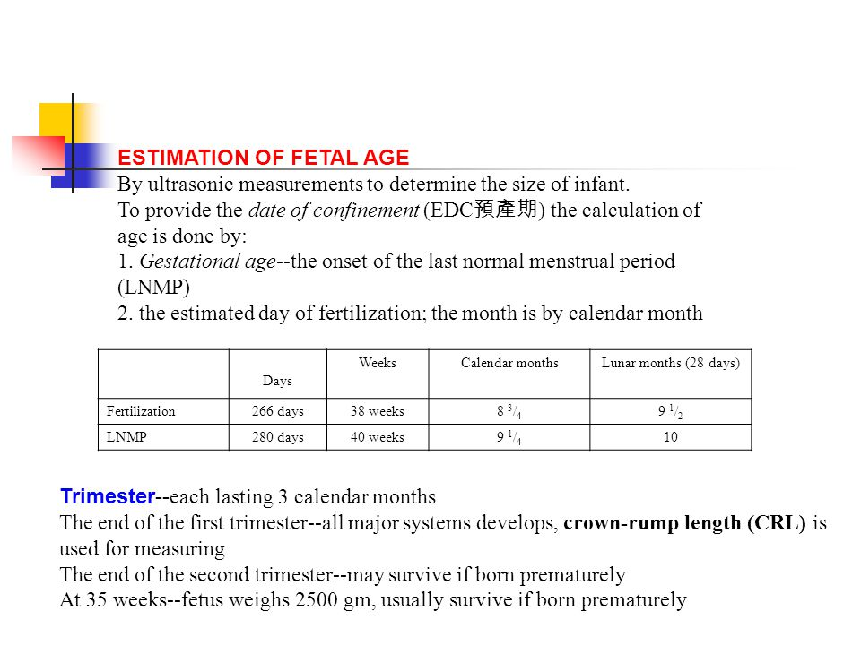 fetal age dating Fetal size and dating: charts recommended for clinical obstetric  only dating tables are presented here fetal size can be assessed using  gestational age (dating.