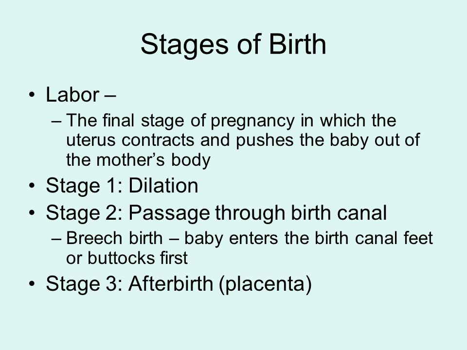 Stages of Birth Labor – Stage 1: Dilation