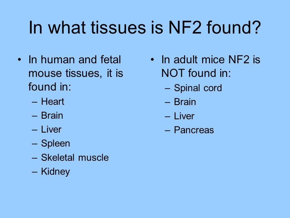 In what tissues is NF2 found