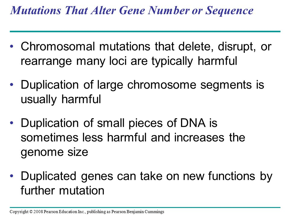 Mutations That Alter Gene Number or Sequence