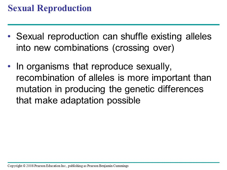 Sexual Reproduction Sexual reproduction can shuffle existing alleles into new combinations (crossing over)