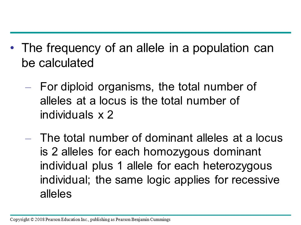 The frequency of an allele in a population can be calculated
