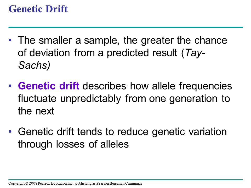 Genetic Drift The smaller a sample, the greater the chance of deviation from a predicted result (Tay-Sachs)
