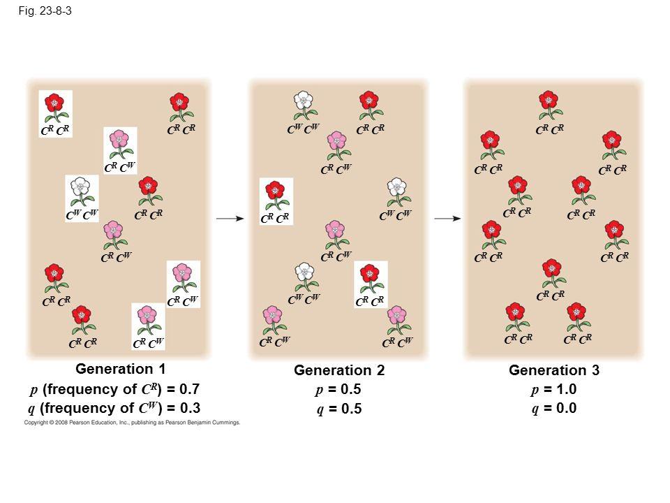 Generation 1 Generation 2 Generation 3 p (frequency of CR) = 0.7