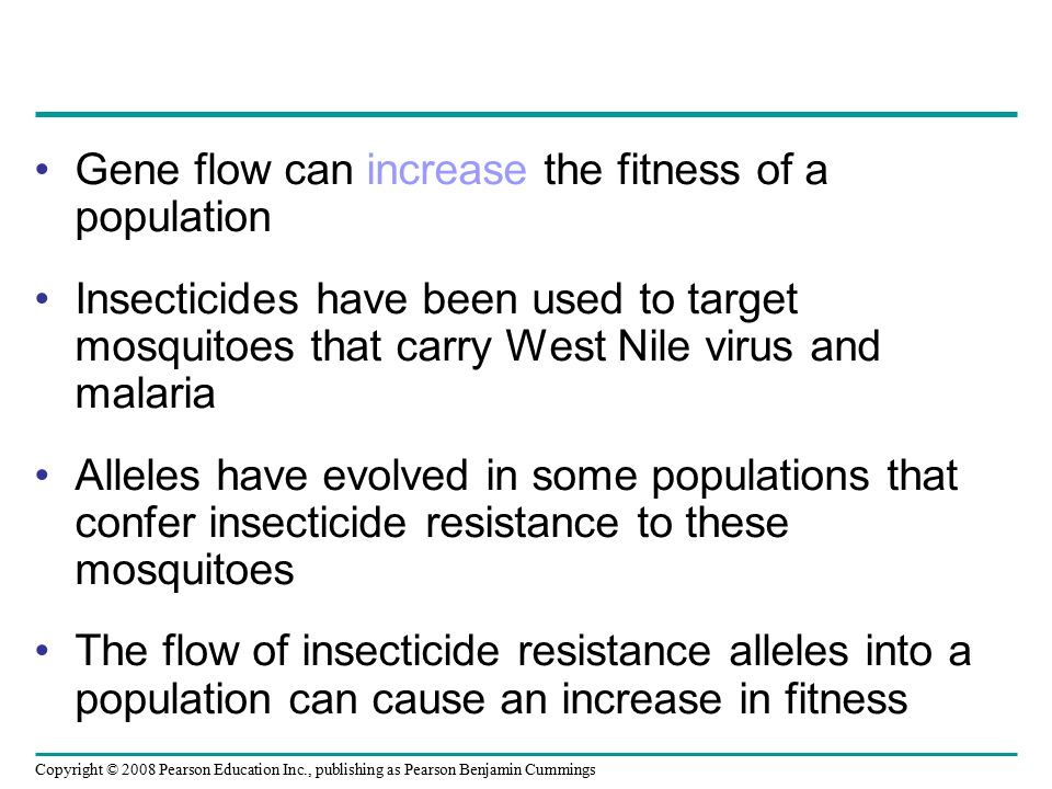 Gene flow can increase the fitness of a population