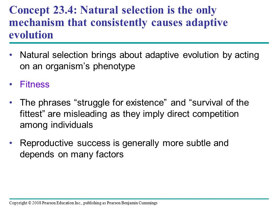 Concept 23.4: Natural selection is the only mechanism that consistently causes adaptive evolution