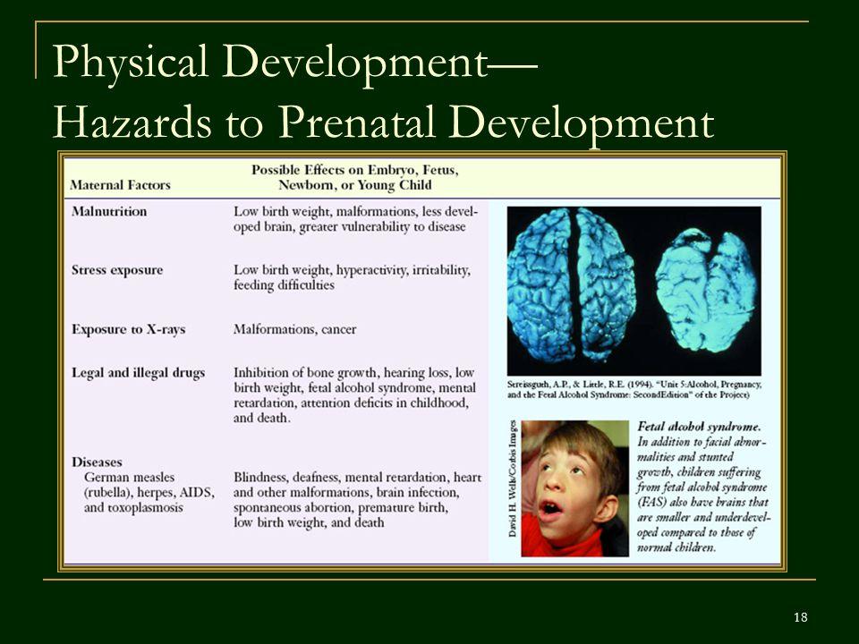 Physical Development— Hazards to Prenatal Development