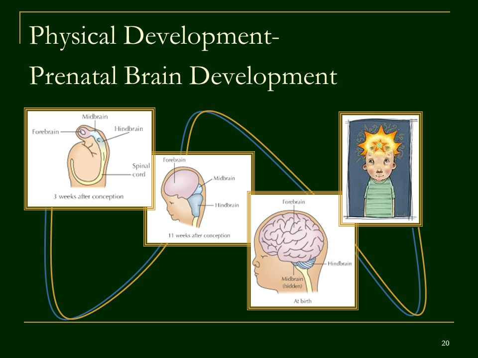 Physical Development-