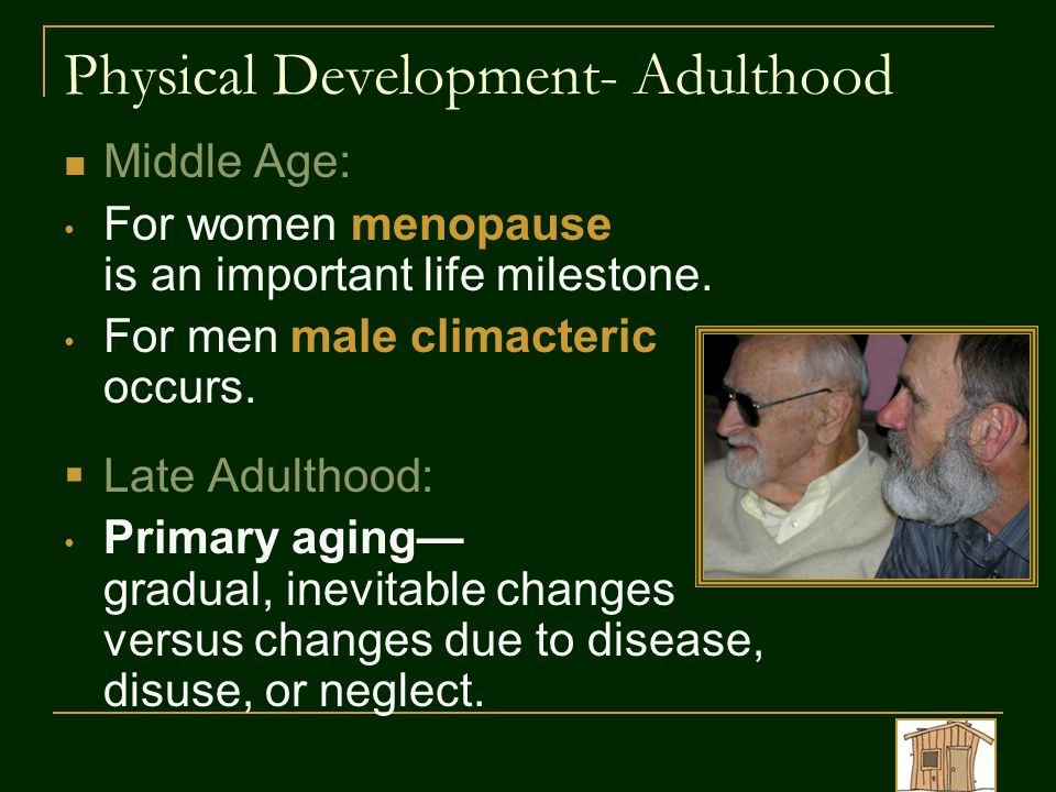 Physical Development- Adulthood