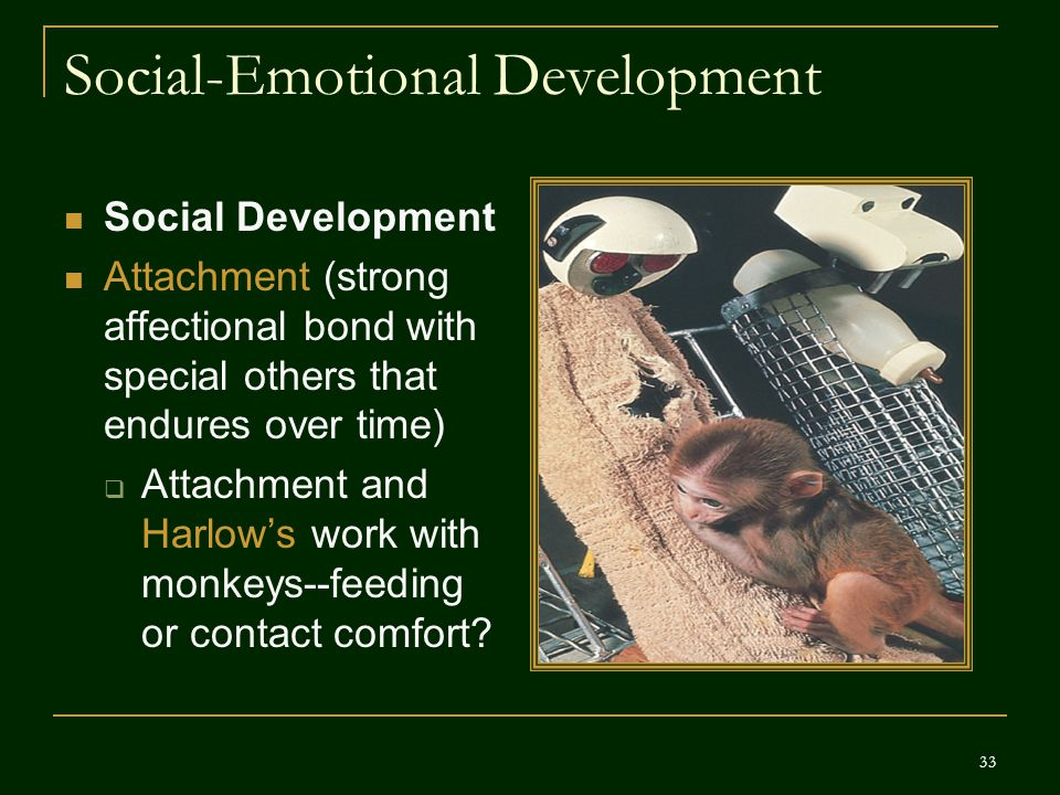 Social-Emotional Development