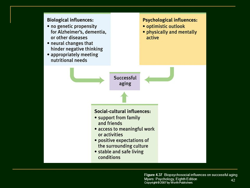 Figure 4.37 Biopsychosocial influences on successful aging Myers: Psychology, Eighth Edition Copyright © 2007 by Worth Publishers