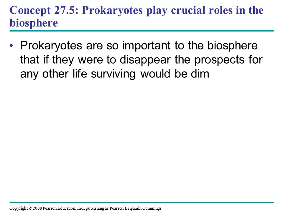 Concept 27.5: Prokaryotes play crucial roles in the biosphere