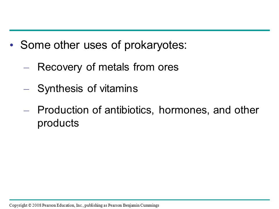 Some other uses of prokaryotes: